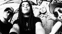 Nonpoint with Throw the Fight