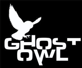 Ghost Owl - Featuring Members of Perpetual Groove