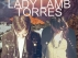 Torres / Lady Lamb the Beekeeper