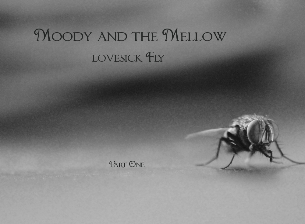 Moody & The Mellow Album Release Show