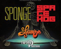 Spacehog and Sponge with Lionize / The Red Paintings