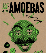 Amoebas + Haunted Leather + ConvoTronics + I Believe In Julio
