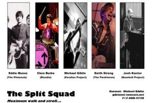 The Split Squad featuring members of BLONDIE, PLIMSOULS, & THE FLESHTONES
