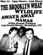 The Brooklyn What with Wyldlife / Aways Away / Mamas
