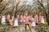 The Polyphonic Spree with special guest