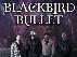 Blackbird Bullet, Anello