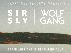 Sir Sly / Wolf Gang / Secret Someones