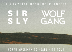 Sir Sly and Wolf Gang