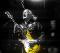 Guitar Legend Dick Dale plus  Mahayla