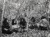 Kikagaku Moyo, Herbcraft, E (ft. Thalia Zedek), 28 Degrees Taurus