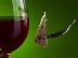 Gaslamp Premier Wine and Food Pairing