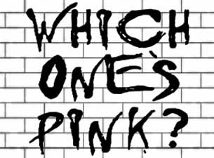 Which One's Pink?