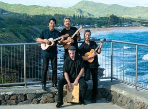 beat lele ukulele tribute to the beatles rh bluenotenapa com