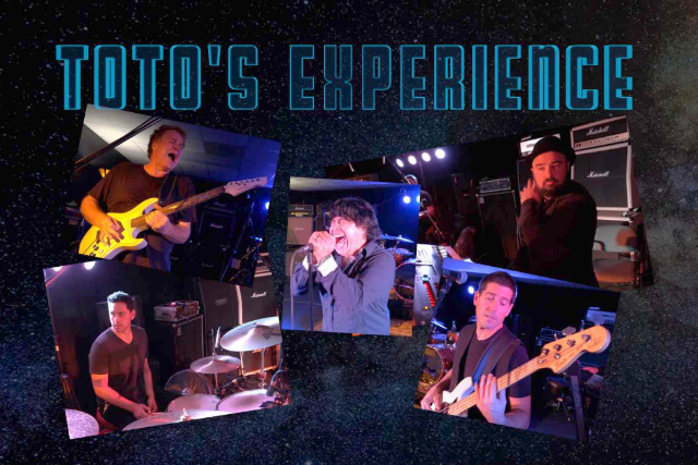 Toto Experience