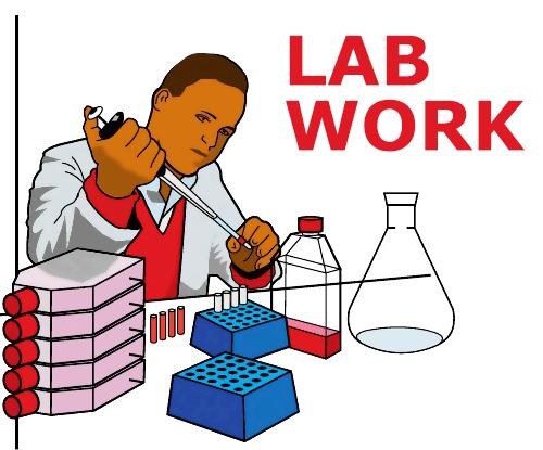 Photo of Lab Work