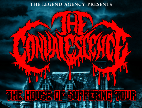 The Convalescence, Worldwide Panic, Casket Robbery