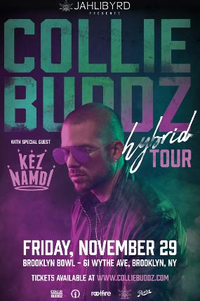 More Info for Collie Buddz