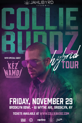 More Info for Collie Buddz