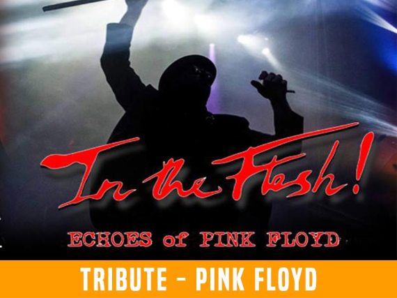 Ticket for In the Flesh! - Echoes of Pink Floyd