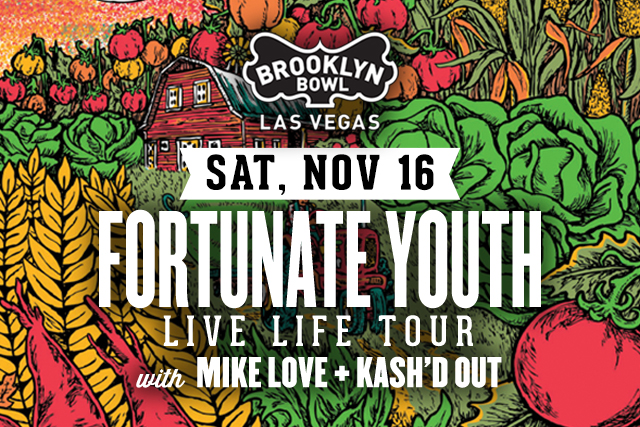 Fortunate Youth: Live Life Tour