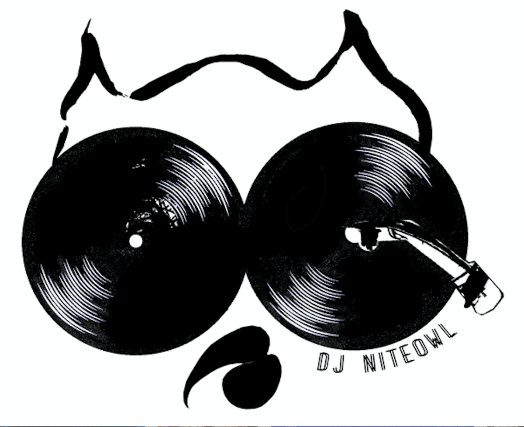 More Info for DJ NiteOwl