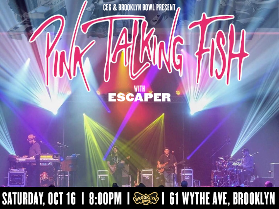 More Info for Pink Talking Fish