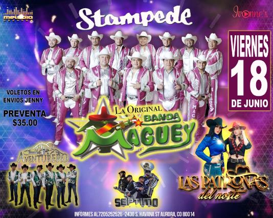 Banda Maguey, Conjunto Aventurero, Las Patronas del Norte
