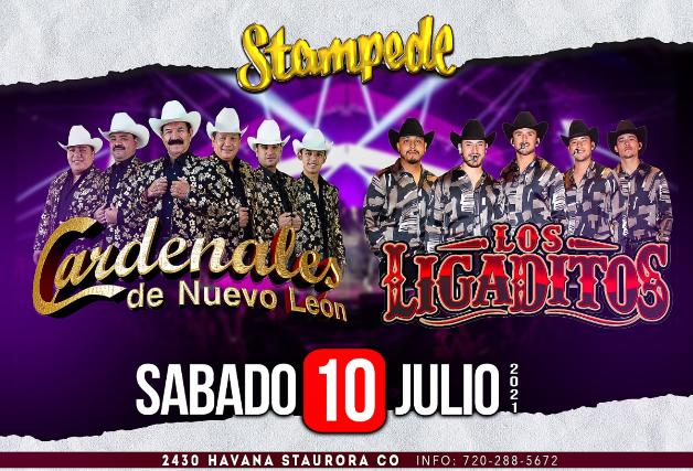 Cardenales de Nuevo León, Los Ligaditos at Stampede